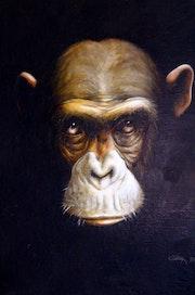 Vieux singe.