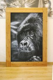 Baby Kong. Aerographe.. Matthieu Janiec