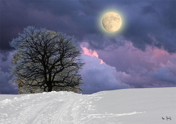 Dans l'hiver se cache le printemps. Max Parisot Max Parisot Du Lyaumont