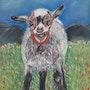 La chèvre. Michèle G