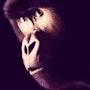Gorille. Jean Esain