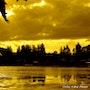 Crépuscule. Coline Kiene