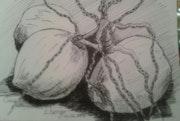Trois cocos (croquis).