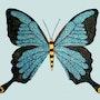 Papillon. Rjcreation
