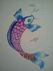 Color fish. Tiphanie Agulhon