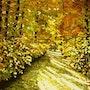 Herbstsonne im Pfälzer Wald. Hofmannsart