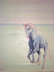Esquisse - Equus -. Lauferartsuisse