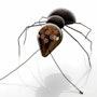 Ant. Lawrie Simonson