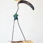 Starling. Lawrie Simonson