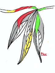 Three Seminole Feathers.