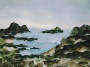 Algues sur les rochers.