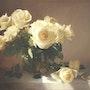 Les Roses. Daniel Trammer