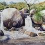 Nacimiento de un río. Alvaro Ferrero