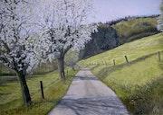 Apfelblüte am Sandhofweg.