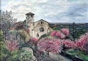Les amandiers en fleurs / The almond blossom.