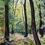 Coup de soleil en forêt. Gérard Pichet