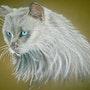 Regard turquoise. Isabelle Banon