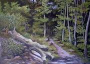 Wanderweg im Pfälzer Wald.