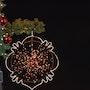 Bonne Année 2013. Sharareh Jafarinejad Soumeh Sarae