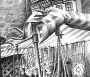Detail of Ross on Wye market drawing. Paul Amphlett