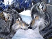 Rencontre avec le loup! !.