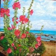 Roses trémières.
