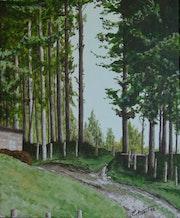 Bosque en Suiza.