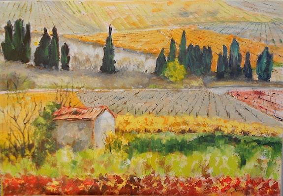 Panorama de vignes (environs de Minerve, aude). Monique Malbert Monique Malbert