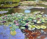 L'étang aux nymphéas.
