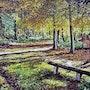 Le banc - C'est en Forêt de Lyons-Haute Normandie-Département de l'Eure. Gérard Pichet