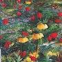 Fleurs en sous-bois / acrylique sur toile. Mariraff
