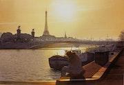 Le lecteur et le pont Alexandre III.
