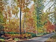 La route forestière - Forêt de Lyons - Haute Normandie-27-Département de l'Eure.