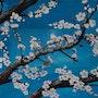 Arbres en fleurs / Peinture en extension. Mariraff
