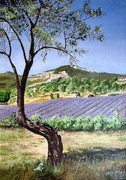 Le lavandin et l'amandier - Sur les routes de Provence /The lavender and almond.