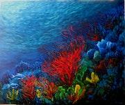 Coral rojo. Cecilia Herrera