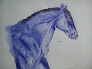 Un cheval au stylo bic. Brenda Delassus