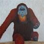 Orang outan au zoo de San Diego, California. Claude Guillemet