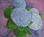 Blaue Hortensie.