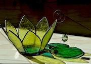 Fleur de lotus. Martine Dugue