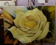 Rose velours.