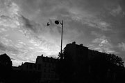 Bird and sky - Plaisance - Octobre 2013.
