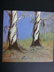 Eucalyptus at Dawn. Victoriart