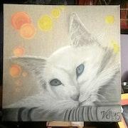 Le chat blanc.