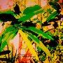 Végétation tropicale. Anita De Martini