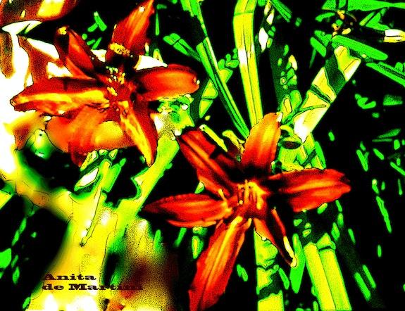 Végétation tropicale. Anita De Martini Anita De Martini