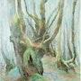 Mousses dans les sous-bois du Limousin. Alain Masset