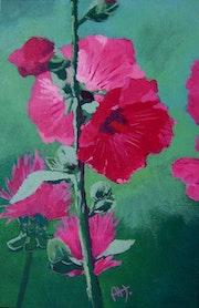 Les roses trémières de l'île de Ré.