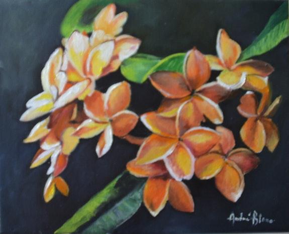 Fleurs de frangipanier. André Blanc Andre Blanc