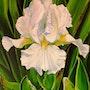 Iris Avanelle. Simone Wilhelms